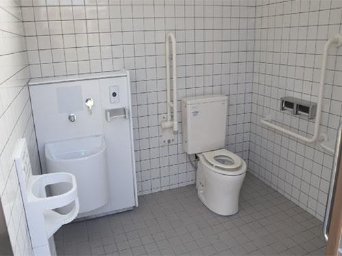 江戸川 区 篠崎 病院